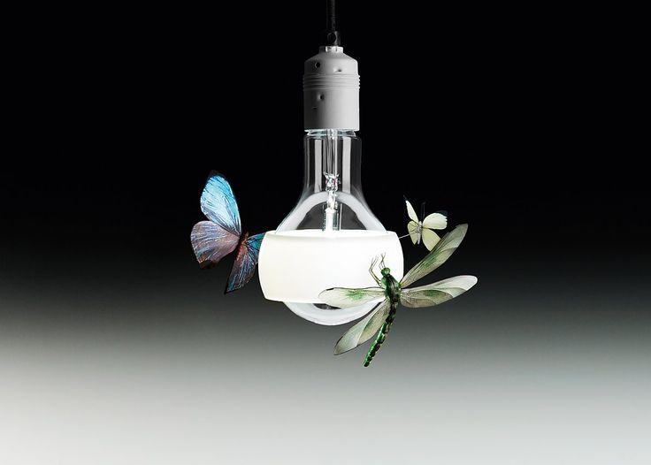 Johnny B. Butterfly - Produkte - Ingo Maurer GmbH
