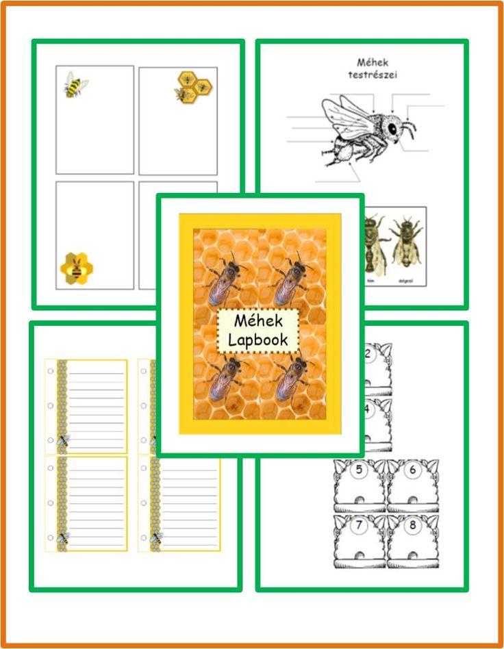 méhek lapbook mintalapok