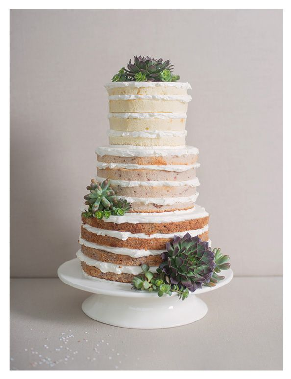 succulent decorations with the rustic layer cake