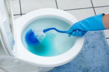 How to Remove a Blue Toilet Cleaner Stain from a Toilet Seat