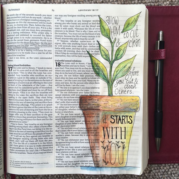 It Starts Here! Draw Close Blog. bible art, Bible blog, bible journal, bible journaling, bible study, Christian blog, cut, flat pack, fruitful, individual, instructions, John 15:1-4, Leviticus 16:17, Matthew 7:3-5, order, orderliness, plank, plant, prune, speck, strength, transformed