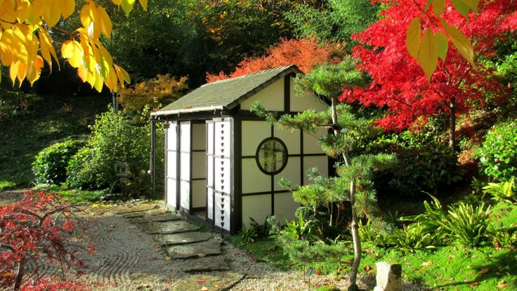 The firework display of autumn colour in the Japanese Tea Garden at Kingston Lacy © Teresa Evans