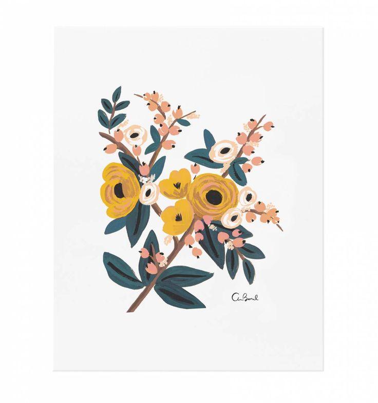 Marigold Botanical Illustrated Art Print