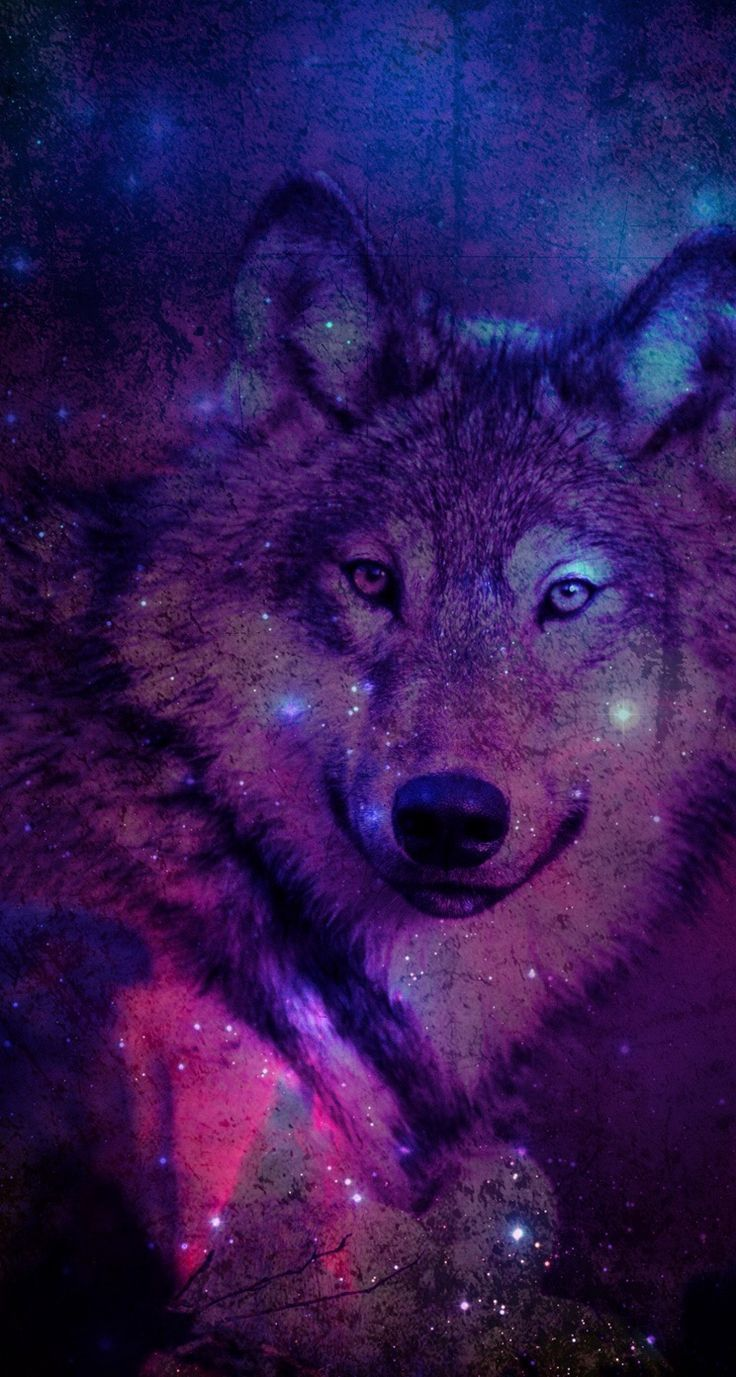 736x1377 Wolf Wallpaper For Iphone Pictures Wolf Wallpaper Galaxy Wolf Wolf Artwork