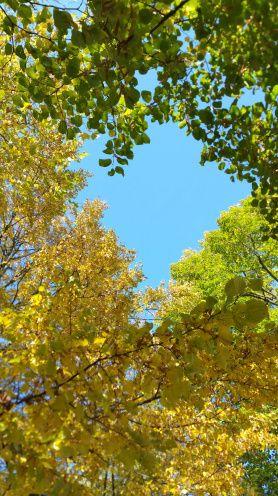 Photos we took in a beautiful park near Pardubicky Zamek | Tiny Expats