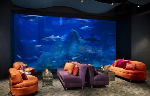 Bright coloured furniture and aqurium