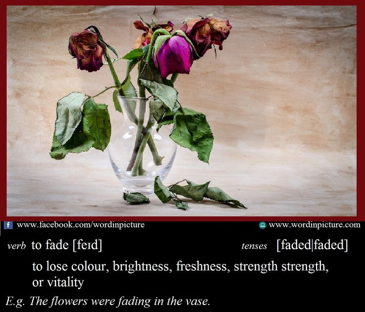 "Learn new word in English: ""Fade""  Fade meaning.  IELTS vocabulary."