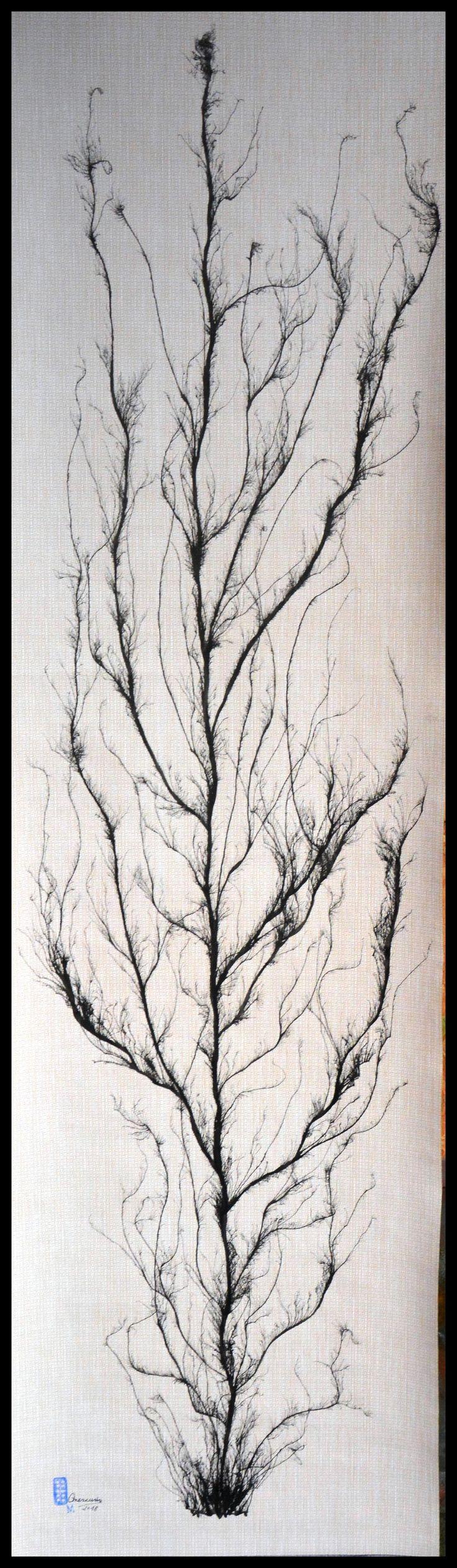 """FICHA TECNICA DE LAS OBRAS """"ARBOLES QUE MIRAIS AL CIELO"""" Nº6 La obra esta realizada con Tinta China al estilo de la escuela del sur de China, también conocida como """"pintura sin huesos"""" (pintura sin contornos). Autor: Mercurio Marin Soporte: Papel pintado. (150gr) Medidas:  Alto.-180cm  Ancho.-52cm Precio: 90€ Gasto de envío a la Península: 9€ (otros preguntar) Forma de pago: Contra reembolso Se envía en tubo de cartón rígido. Certificado de Autenticidad y Pieza Única."""