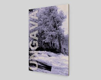 Collection Ungava: Les grands thuyas et la rivière de la forêt boréale. Photographie sur film originale imprimée sur bois.