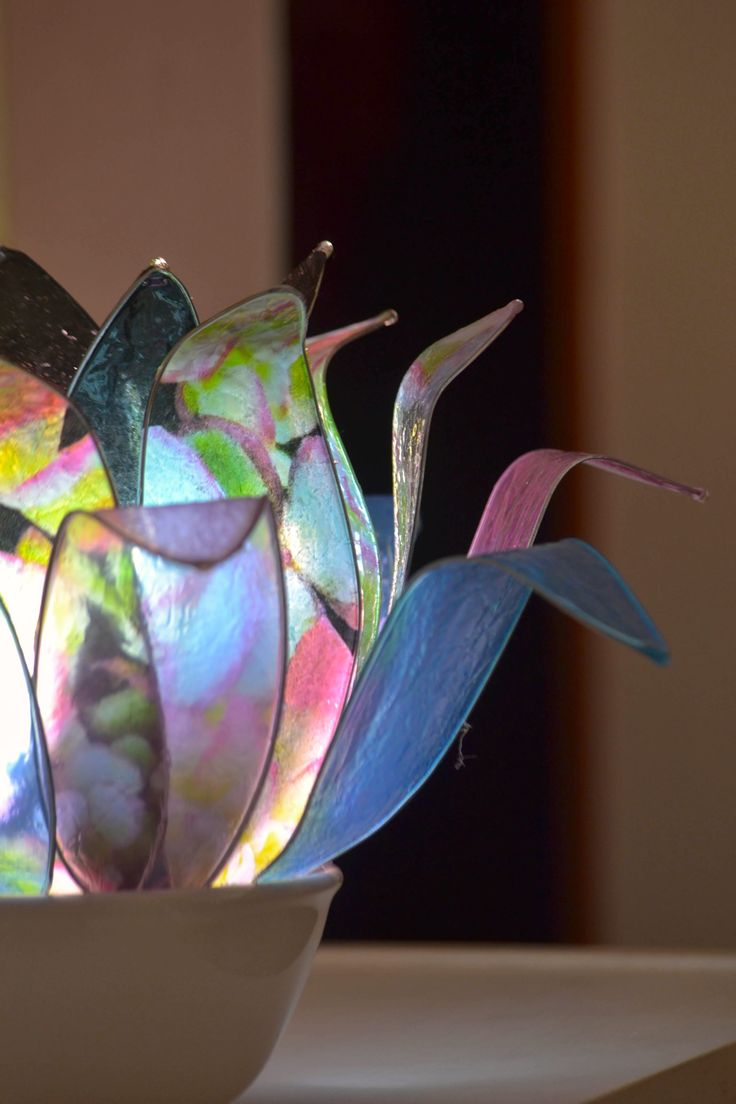 Orchidea Nera.