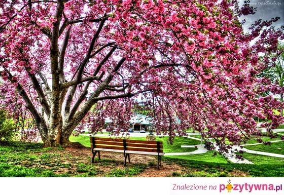 Pozytywnie, wiosennie, lekko... :-)