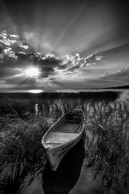 farewell song Photo by cemal sepici — National Geographic Your Shot