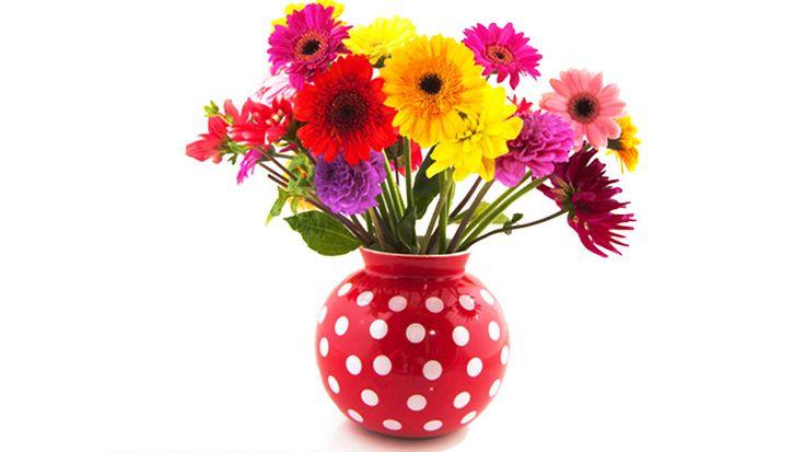 Долгая жизнь вашего букета: как сохранять срезанные цветы