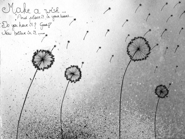 17 Best Cruise Quotes On Pinterest: 17 Best Dandelion Quotes On Pinterest