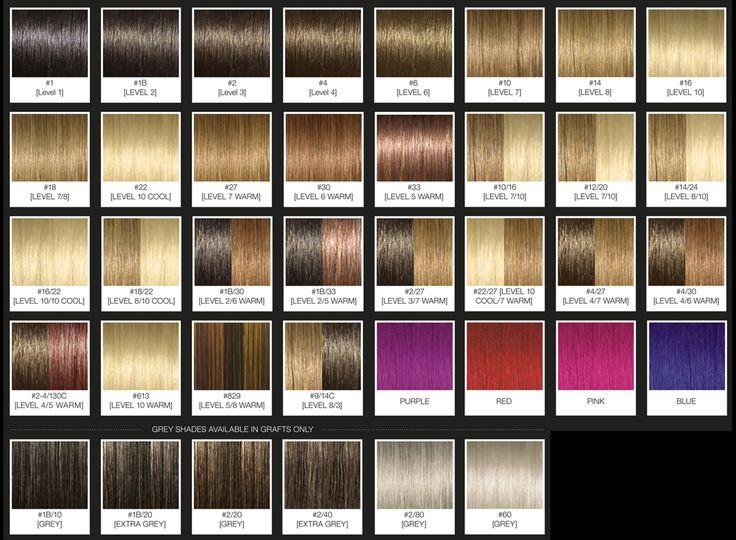 Best 25+ Argan oil color chart ideas on Pinterest | Blonde ...