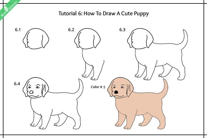 Step By Step Guide On How To Draw A Dog For Kids   Cute ...