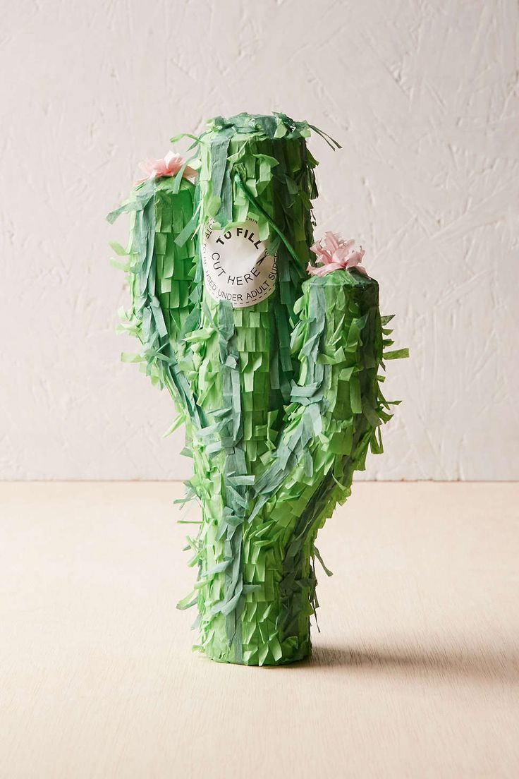 17 best images about fiesta on pinterest a symbol for Cactus pianta