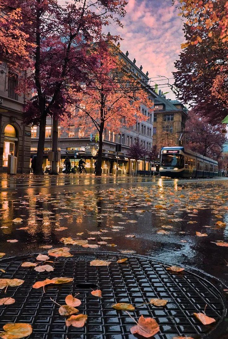 16 Zurich