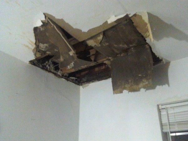 Ceiling Caved In Google Search With