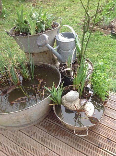 Que faire avec des vieux pots et bassines en zinc? Et bien des bacs à eau bien sur et des pots de fleurs pour ceux qui sont percés ! Me voilà , donc parti faire la razzia dans mes plantes, je dédouble les iris d'eau orange , les nénuphars rouges , la...