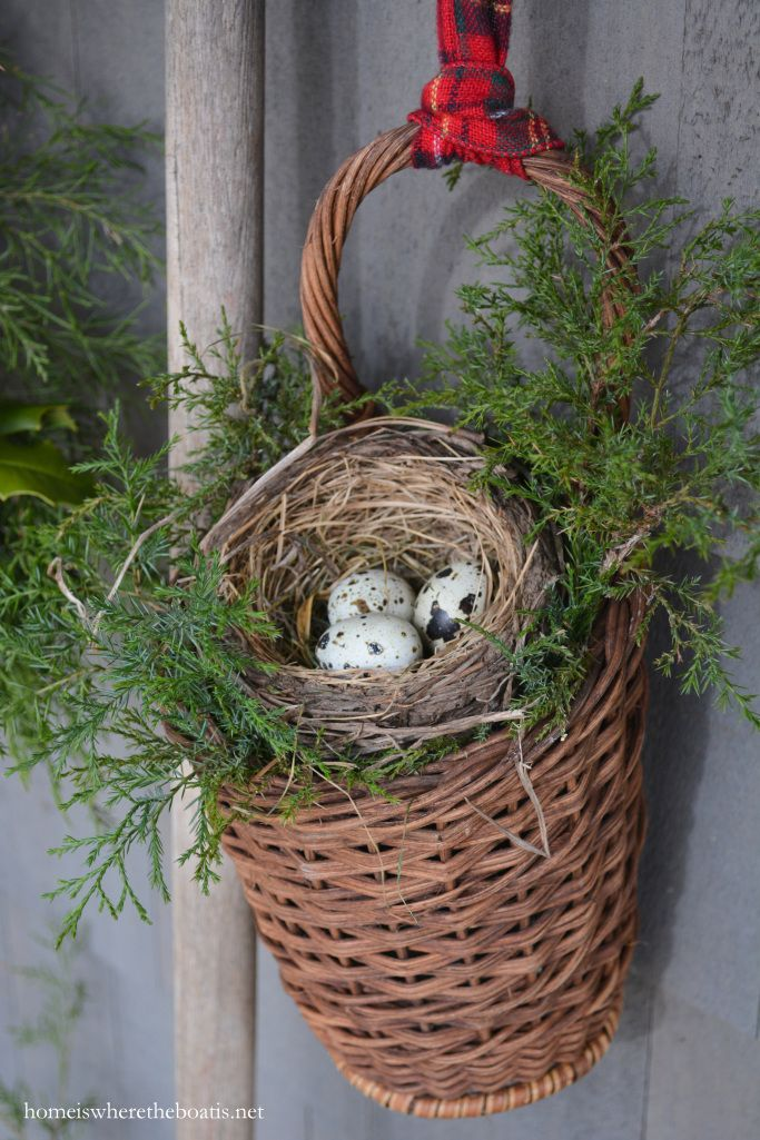 Basket with cedar, and bird nest #Christmas #pottingshed