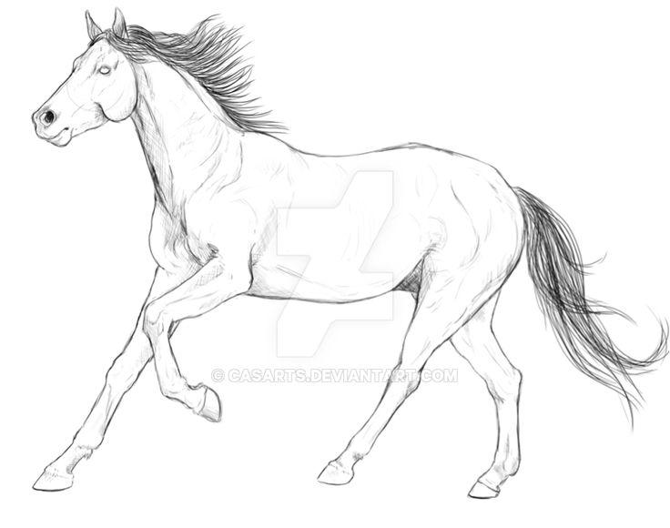 running_horse_by_casarts-d9wntv8.png 900 × 710 bildepunkter