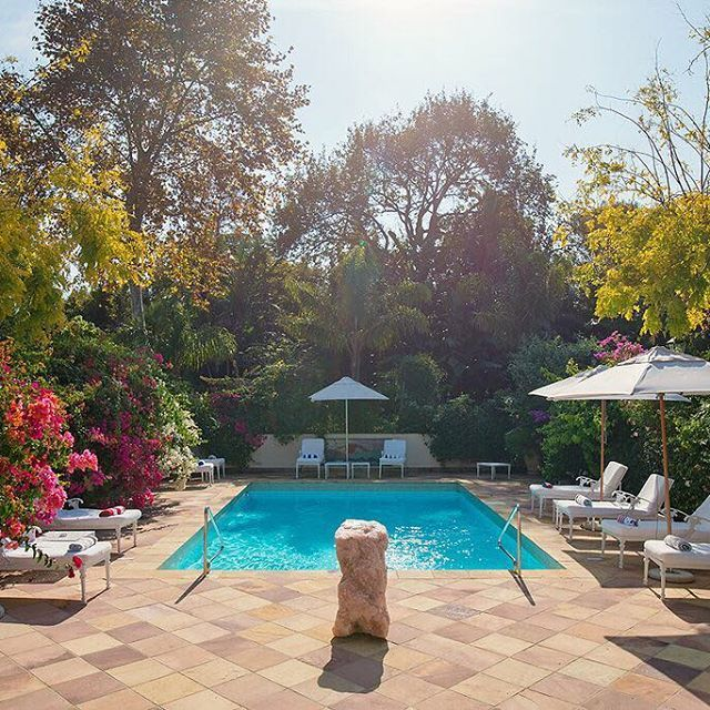 A bright and beautiful day in Constantia, the perfect day to be lazing by the pool.   ____________________