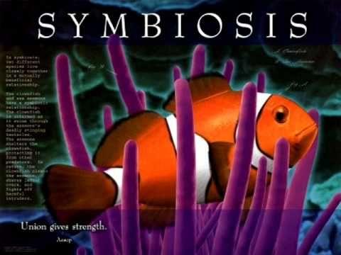 "Biology - Original Music ""Floater"" by Bob Crawford"