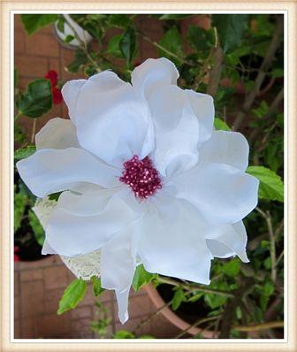 Bentita cu floare alba (10 LEI la nicolebijou.breslo.ro)