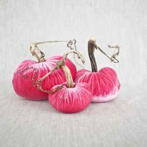Velvet PINK Pumpkin Trio - Each purchase makes a donation to the National Breast Cancer Foundation.