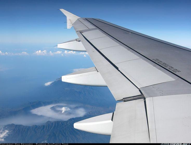 Mandala Air Airbus A319-132 aircraft picture