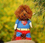 EQLEF® Superman perro de perrito del gato de Halloween Costume Ropa para mascotas Ropa de Vestir Superdog - Suministros para mascotas (Large(cuello: 30-34cm))