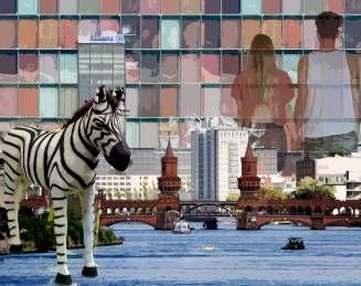 Zebra in Berlin. Berlin. Fotocollage.