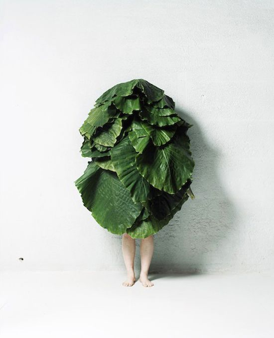 Makoto Azuma - Leaf Man  I honestly can't tell you why this made me laugh so hard....