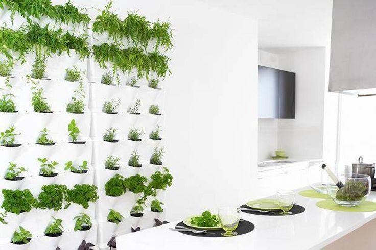 Awesome indoor herb garden kit walmart interesting pins for Indoor kitchen garden