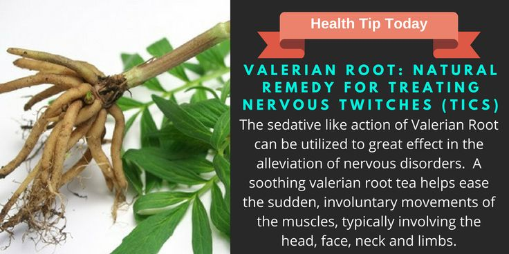 Valerian Root: Natural Remedy For Treating Nervous Twitches (Tics)