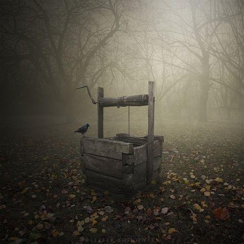 Raven's Well, Poland  photo Leszek Bujnowski