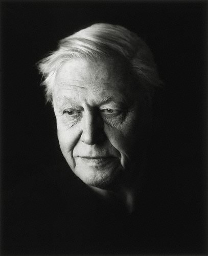 David Attenborough - because his life is amazing and the stories that he could tell would keep me quiet for hours