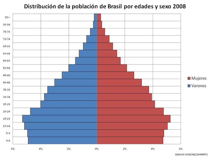 Pirámide de población en país en vías de desarrollo: Brasil (2008)