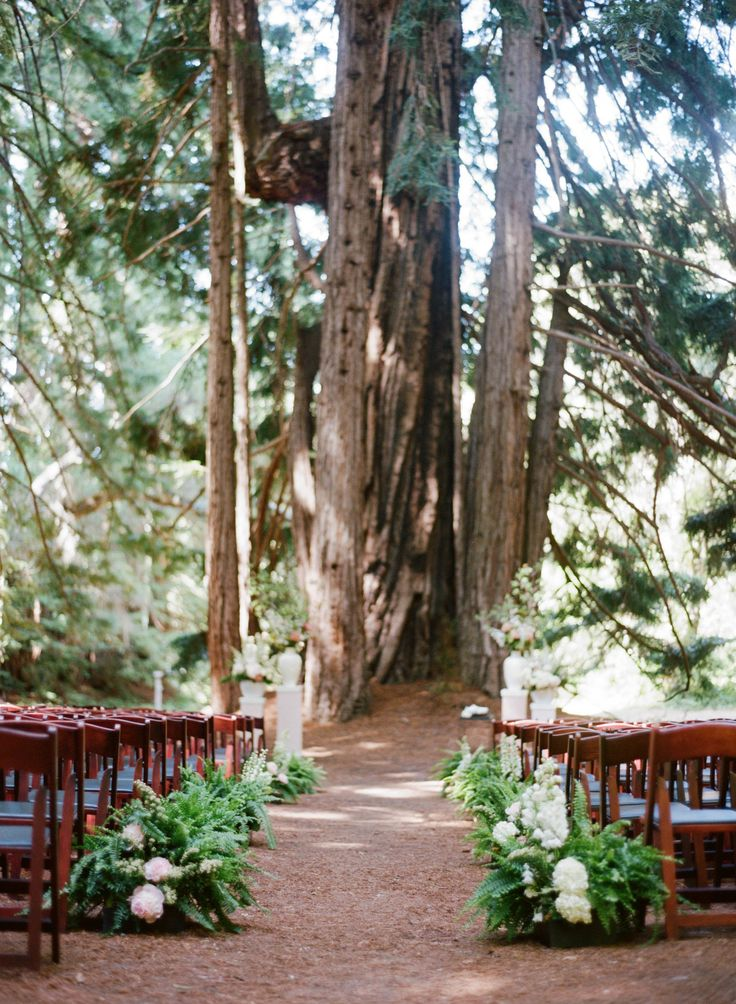 What a beautiful backdrop!  The ferns and flowers aisle decor are perfect.  Santa Lucia Preserve in California
