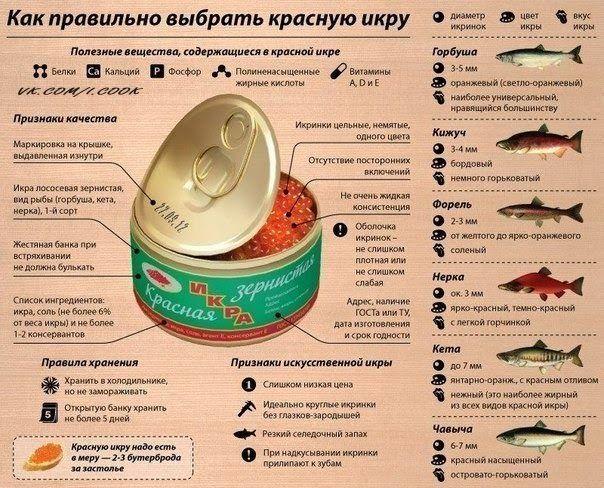 БЛОГ ПОЛЕЗНОСТЕЙ: Как правильно выбрать красную рыбу.