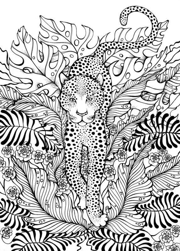 Leopard Coloring Page Adult ColouringAnimalsZentangles