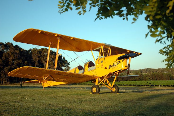 Owned by the Edwards family who produce superb quality wines. Dr Brian Edwards flew this Tiger Moth (on display at the vineyard) from England to Australia in 1990. Image courtesy of Edwards Wines.