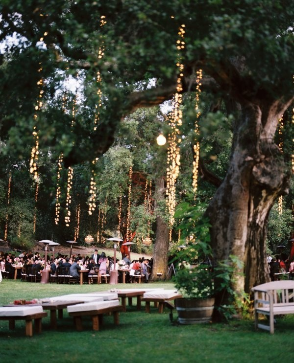 lights hanging from tree tranches at outdor wedding reception | photo: www.karenwise.com