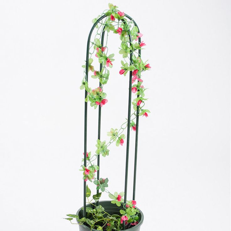 Plants Support Arch Rack Stand Flower Vines Climbing Holder Balcony Garden Decor | eBay