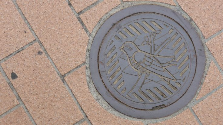 There are even cute birds to find on manholes.