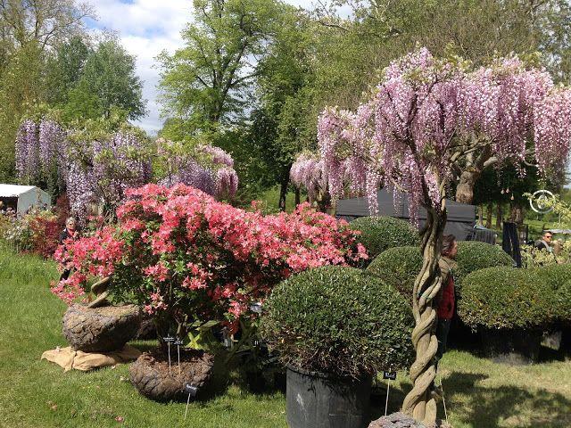 P'tit Ecureuil et ses Hommes: 13,14 et 15 mai, les journées des plantes de Chantilly...