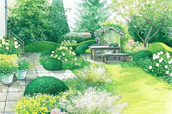 ein garten wird erwachsen patio plants and hedges. Black Bedroom Furniture Sets. Home Design Ideas