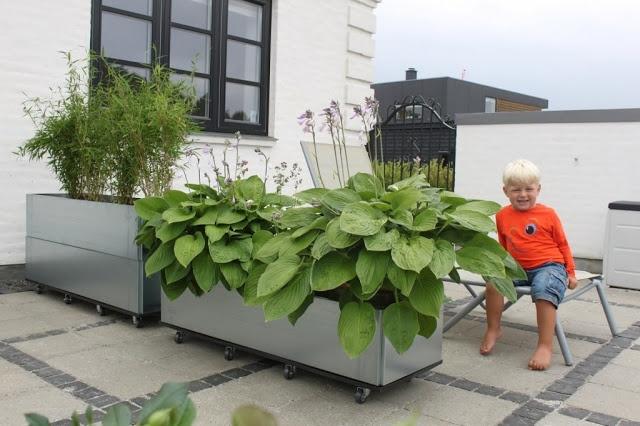 Hverdagsmoment: Terrasse inspiration. FEDT med store kasser på hjul (??!) som kan inddele en stor terrasse...