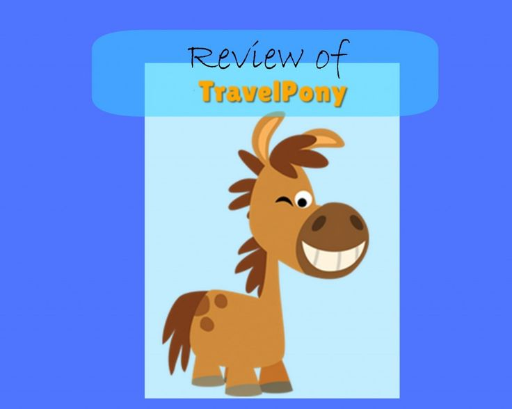 Ride the TravelPony: This New Hotel Booking Website Can Save you Money on Accommodations  - read our full review!